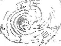 Схема лабиринта.